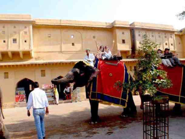 Rajasthan (Jaipur), Elephants with Amber Fort and girls having fun. maninio.com #Rajastanjaipur #Agradelhi