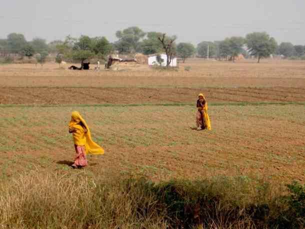 Rajasthan (Jaipur), countryside. maninio.com #Rajastanjaipur #Agradelhi