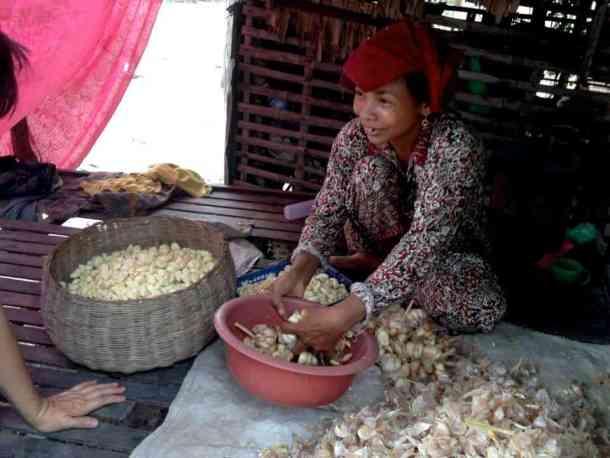 Village lady peeling garlic at her work- #volunteerinasia #volunteerincambodia maninio.com