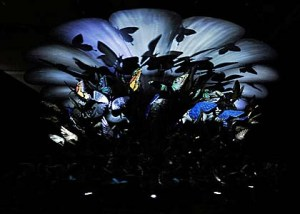 Mat Collishaw zoetrope3 at Nottingham Museums at Night 2013
