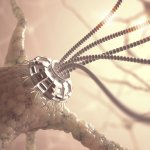 2030 Mission: Nanobots In Our Brains
