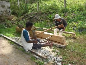 Regenwaldhölzer werden oft illegal geschlagen und zu Holzkohle verarbeitet oder als Bauholz verkauft