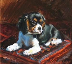 Morgan dog portrait