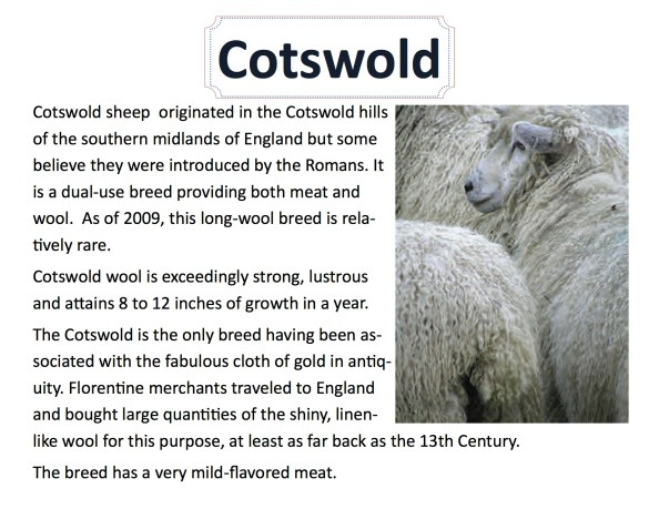 cotswold-info-sheet-2