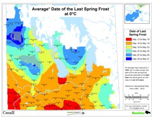 Avg Date Last Spring Frost - 0 degrees - MB Ag map