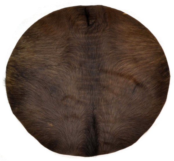 Calf skin with hair