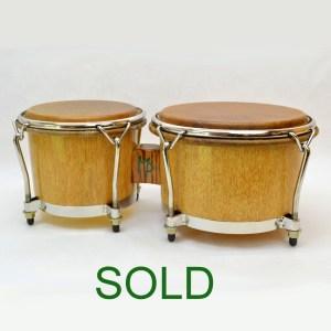 palmetto bongos
