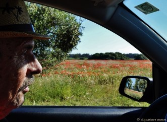 Uncle plus poppies.