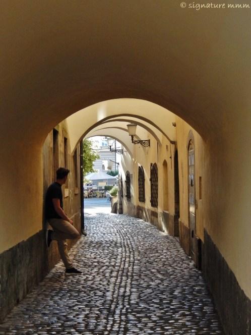 Ljubljana alley towards the river.