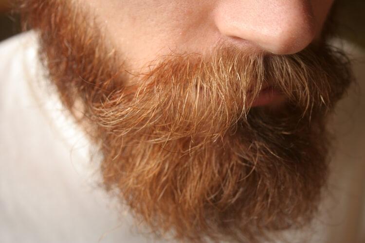 Growing a long full beard