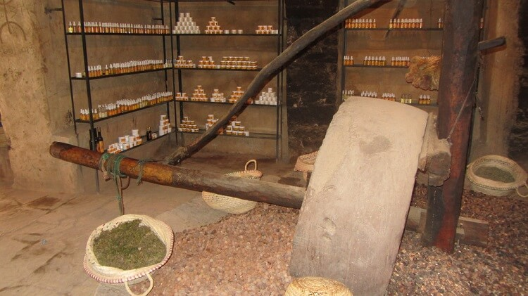 Argan oil production process and shop