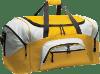 Aimtrend gym bag for men