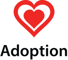Adoption From Foster Care: The Joy of a Growing Family