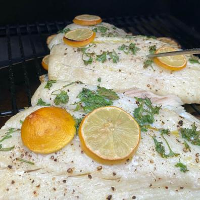 This Traeger review photo shows halibut cooking on the Traeger Pro 575 Pellet Grill.