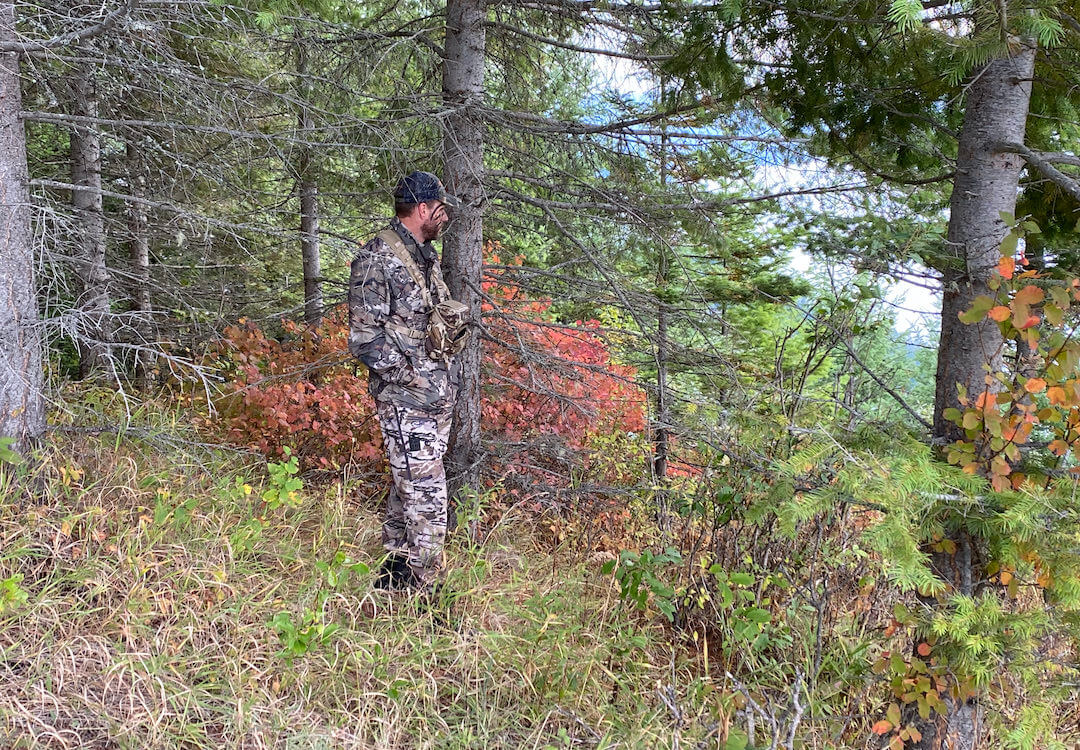 This photo shows the author testing the UA camo pattern in an open autumn environment.