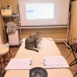 中医学講座第一回