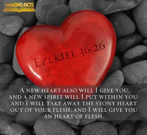Ezekiel 36:26 - This Scripture Picture is provided courtesy of Amazing Facts. Visit us at www.amazingfacts.org