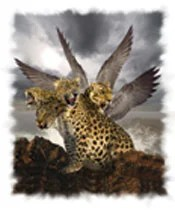 The leopard beast of Daniel 7 represents the world kingdom of Greece.