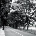 roads – 4