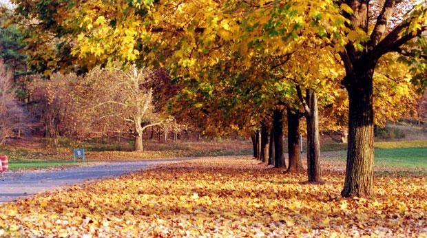 Männermode im Herbst