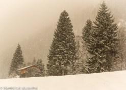 Tannheimer Tal Schneetreiben