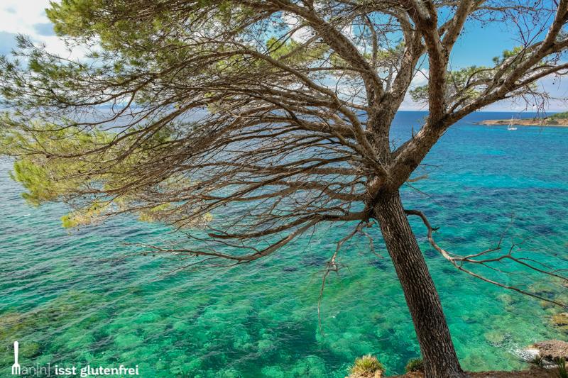 Mallorca Impressionen glutenfrei