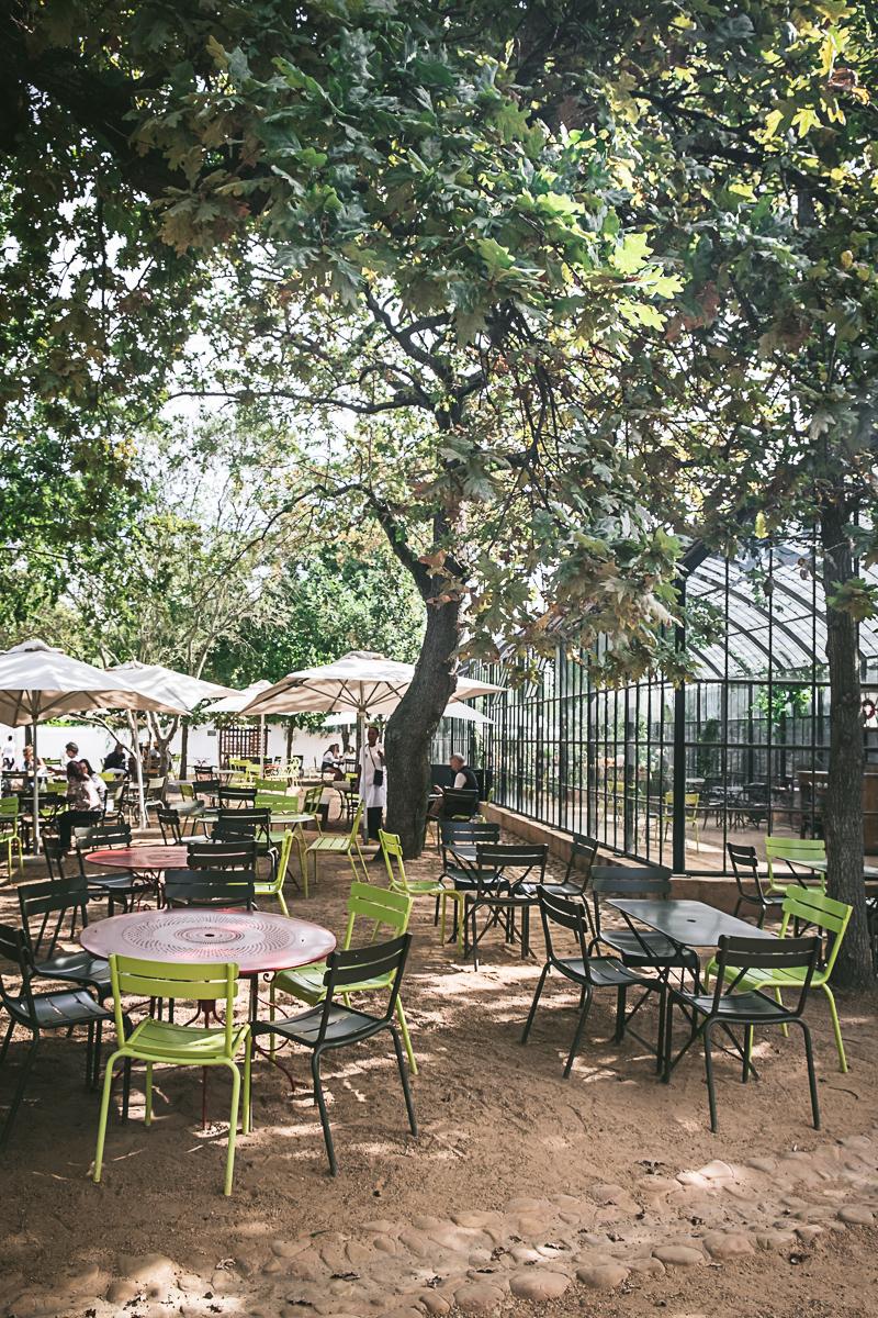 Babylonstoren Cape Dutch Farm Greenhouse Cafe
