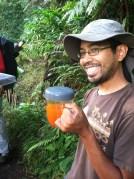 Clermontia seed tea!
