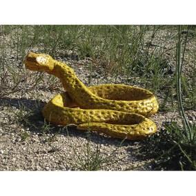 Crotalo amarillo</br> 2011