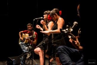 fotos-concierto-maria-rozalen-en-caja-negra-cigarreras-julio-2013-_dsc2512