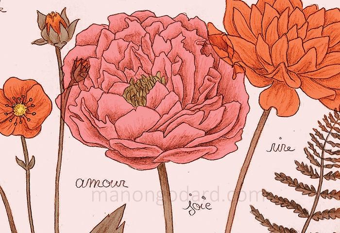 Fleurs au crayon – Illustration de ma carte de vœux 2018