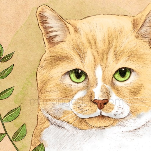 "Illustration ""Le chat aux yeux verts"" par Manon Godard"
