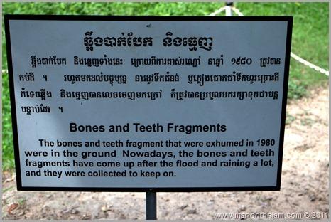 Bones and Teeth Fragments Sign