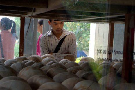 Cambodian Man looking at skulls in memorial