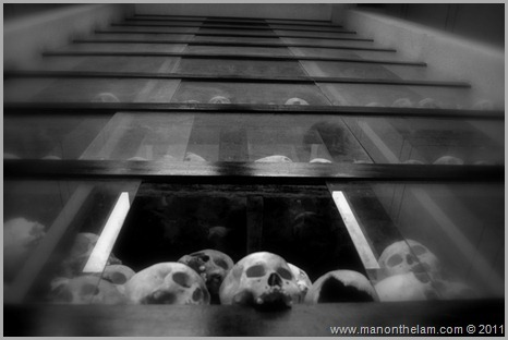 Some of the 8000 human skulls at Choeung Ek