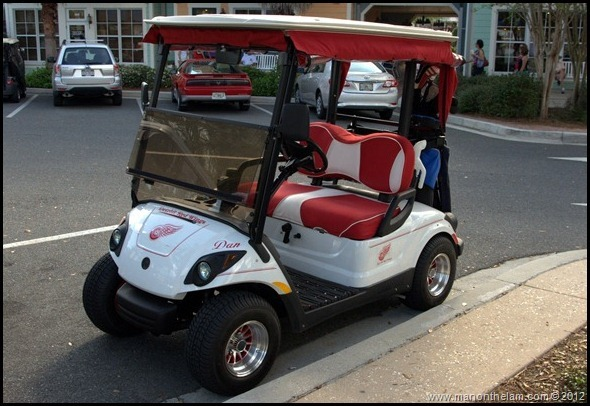 Detroit Red Wings golf cart -- The Villages, Florida -- Aeroplan 007