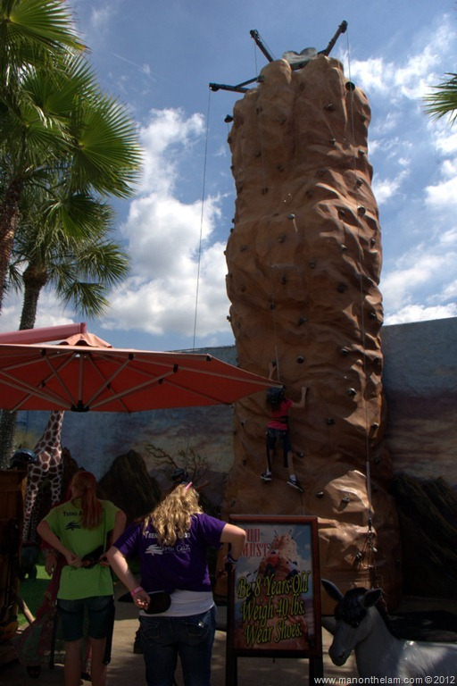Childrens-Climbing-Wall-the-Holy-Land-Experience-Orlando-Florida.jpg