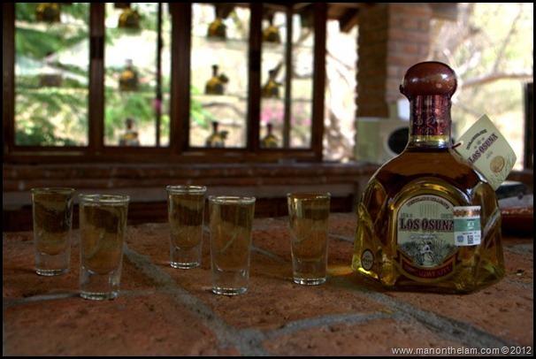 Los Osuna Agave Azul, Mazatlan, Mexico, @GoMazatlanNow