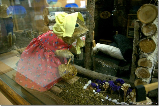 Log cabin stuffed gopher at Gopher Hole Museum, Torrington Alberta