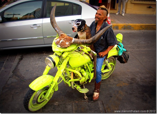 Motorcycle with horns, dog in Mexican wrestling mask -- Mazatlan, Mexico @GoMazatlanNow