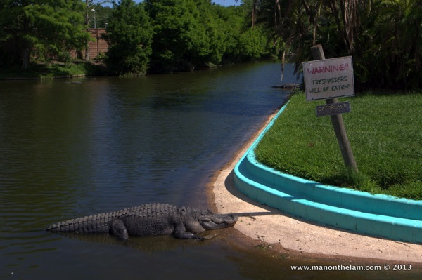 Gatorland Orlando Florida quirky things to do in Orlando