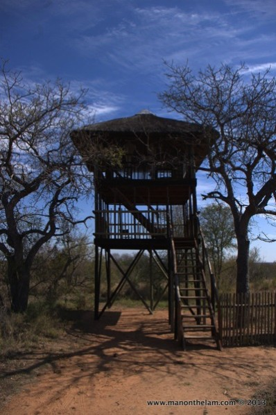 Africa-on-Foor-Klaserie-Game-Reserve-tree-house