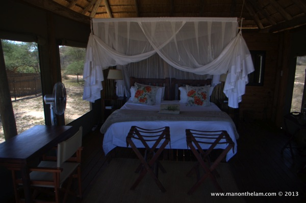 Africa on Nthambo Tree Camp, South Africa
