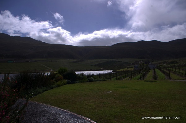 Creation Wines Hermanus South Africa 068