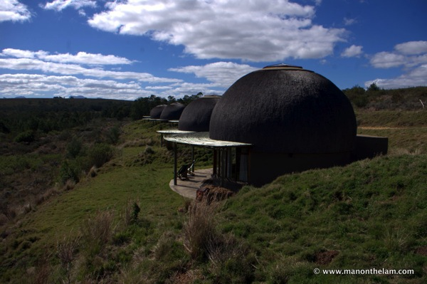 Gondwana Game Reserve South Africa 563