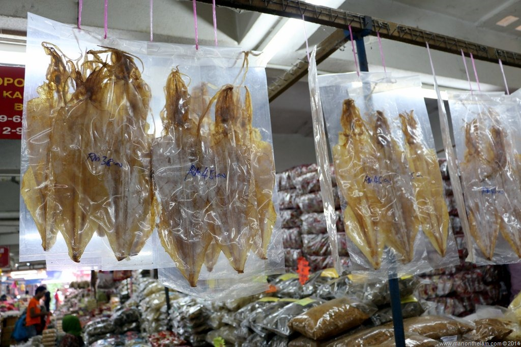 Everything You Ever Wanted to Know about Squid Jigging ...
