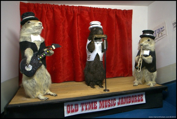 Old-Tyme-Music-Jamboree-stuffed-gophers-at-Gopher-Hole-Museum-Torrington-Alberta