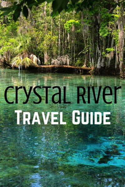 Man On The Lam Top 100 Travel Blog Posts of 2015 so far by social media shares  Crystal River Travel Guide
