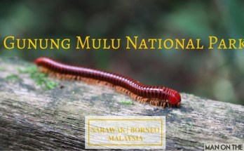 Exploring Borneo's Mulu Caves at Gunung Mulu National Park