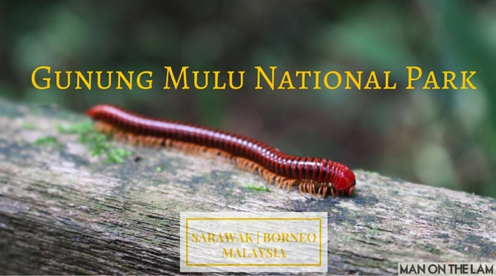 Gunung Mulu National Park  2